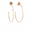 Medium Rose Gold Hoop Earrings