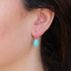 Amazonite 18k Gold Egg Earrings