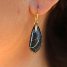 Yowah Opal Wing Earrings Image