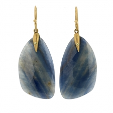 Sapphire Wing Earrings Image