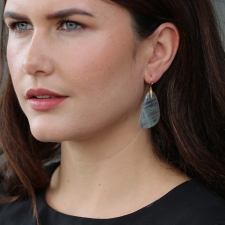 Aquamarine Moth Wing Slice Earrings Image