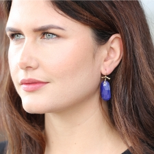 Medium Lapis Branch Earrings Image