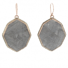 Meteorite 14k Rose Gold and Silver Earrings Image