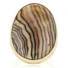 Large Vertical Fossilized Channel Wood Ring Image