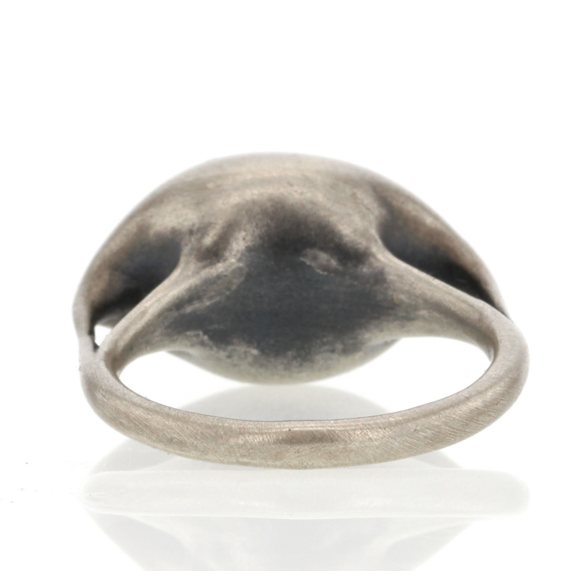 Zeppelin Brushed Silver Ring
